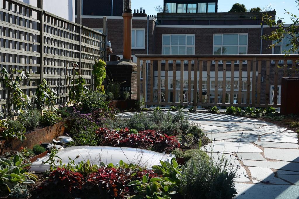 roof garden Amsterdam